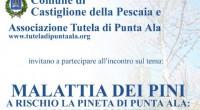 Venerdì 24 Agosto 2012, alle ore 10.30, presso la Delegazione comunale al Gualdo (Piastra servizi) si terrà un incontro sulla malattia dei pini che ha colpito la pineta di Punta […]